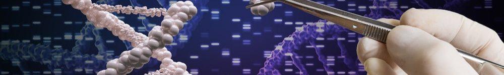 הוירוסים משנים תפקיד, נרתמים לעזרת המדע בטיפול הגנטי